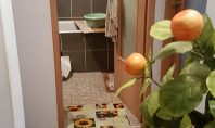 Apartament 4 camere, Galata, 70mp