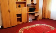 Apartament 1 camera, Frumoasa-Nicolina, 36mp