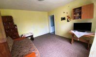 Apartament 1 camera, Pacurari, 30mp